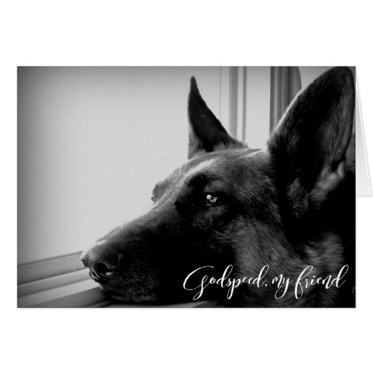 German Shepherd Pet Loss Sympathy Card