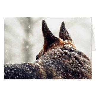 German Shepherd Photo Greeting Cards