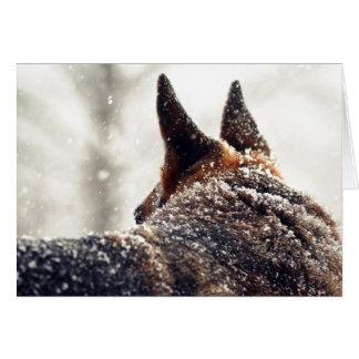 German Shepherd Photo Greeting Card