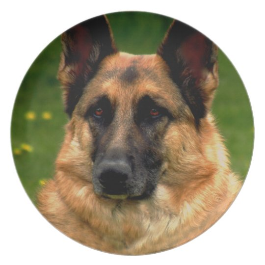 German Shepherd Photo Plate