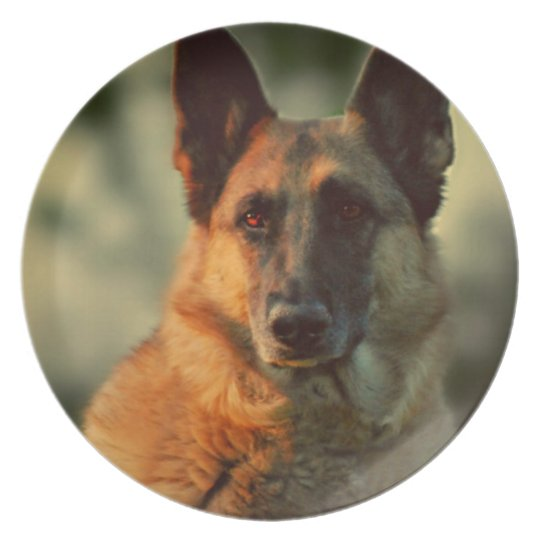 German Shepherd Plate
