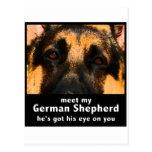 German Shepherd Postcards