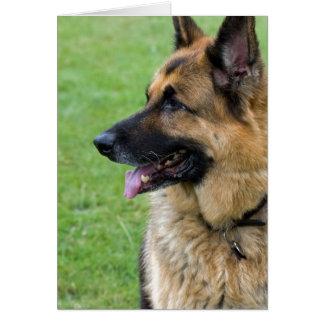 German Shepherd Profile Note Card