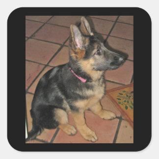 German Shepherd Pup Sticker