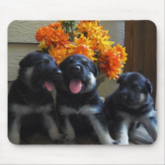 German Shepherd Puppies Mouse Mat