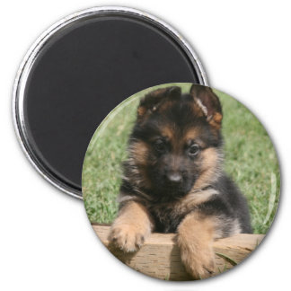 German Shepherd Puppy Magnet