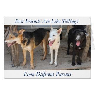German Shepherd Rescue Friendship card