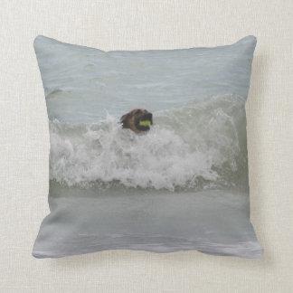 german shepherd swimming in wave cushion
