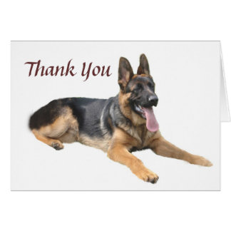 German Shepherd Thank You Card