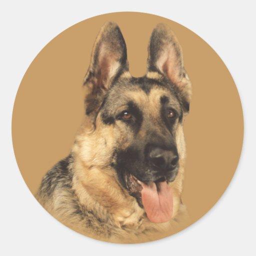 German Shepherd Very Handsome Sticker