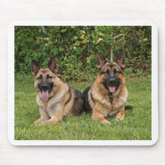 German Shepherds Mouse Mat