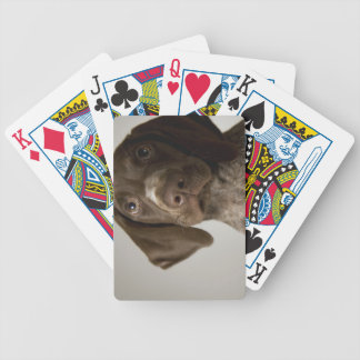German Short-Haired Pointer puppy Bicycle Playing Cards