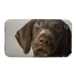 German Short-Haired Pointer puppy iPhone 3 Case