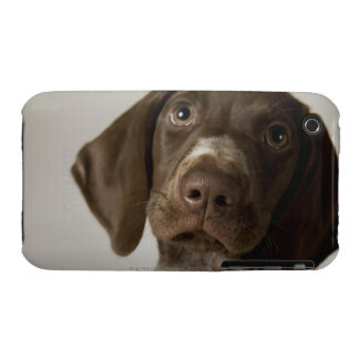 German Short-Haired Pointer puppy iPhone 3 Case-Mate Cases