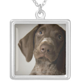 German Short-Haired Pointer puppy Silver Plated Necklace