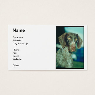 19 pointer dog business cards and pointer dog business card templates. Black Bedroom Furniture Sets. Home Design Ideas