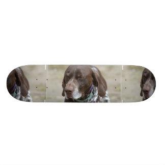 German Shorthaired Pointer Custom Skateboard