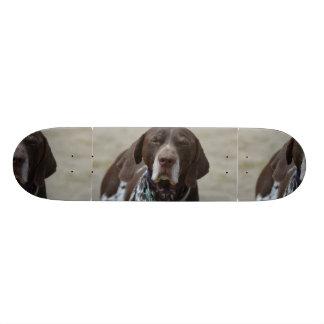 German Shorthaired Pointer Dog 21.6 Cm Skateboard Deck
