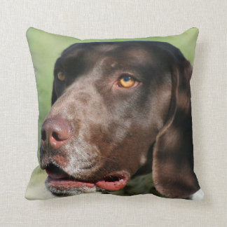 German Shorthaired pointer dog Cushion