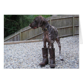 German Shorthaired Pointer in Boots Card
