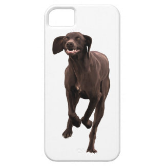 German Shorthaired Pointer Pet-lover Barely There iPhone 5 Case