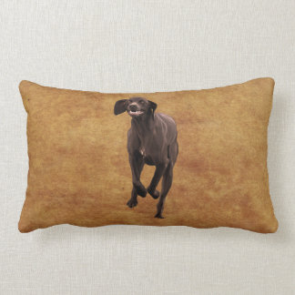 German Shorthaired Pointer Pet-lover Cushion