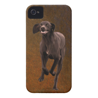 German Shorthaired Pointer Pet-lover iPhone 4 Case-Mate Case