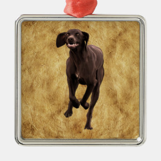German Shorthaired Pointer Pet-lover Silver-Colored Square Decoration