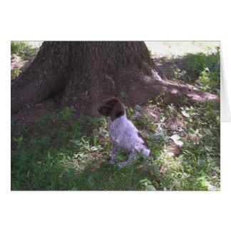 German Shorthaired Pointer Puppy Under a Tree Card