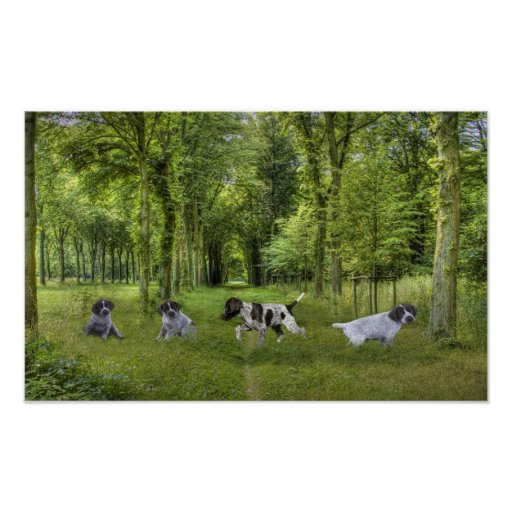 German Shorthaired Pointer Pups Print
