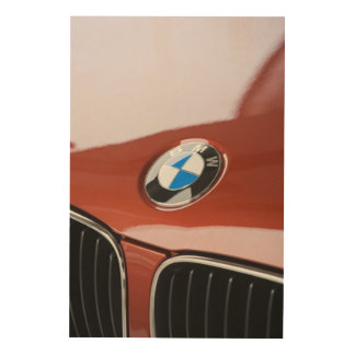 Germany, Bayern-Bavaria, Munich. BMW Welt Car 2 Wood Canvases