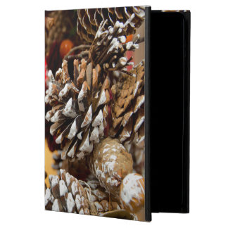 Germany, Cologne. Cologne Cathedral Christmas iPad Air Cover