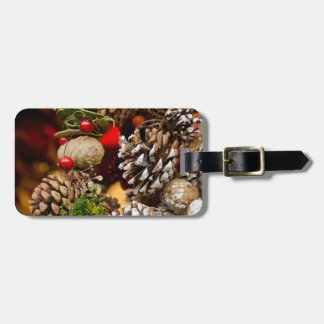 Germany, Cologne. Cologne Cathedral Christmas Luggage Tag