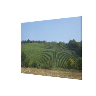 Germany, Franconia, Rothenburg. View along the Canvas Print