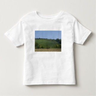 Germany, Franconia, Rothenburg. View along the Toddler T-Shirt