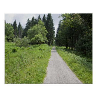 Germany, Thuringia, path in forest Poster