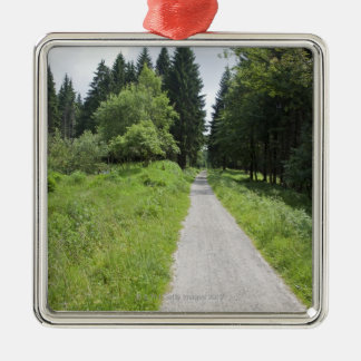 Germany, Thuringia, path in forest Silver-Colored Square Decoration
