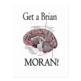 Get a Brian, Moran! Postcard