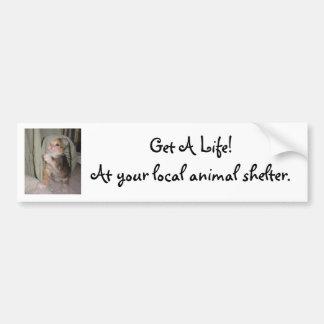 Get A Life! Car Bumper Sticker