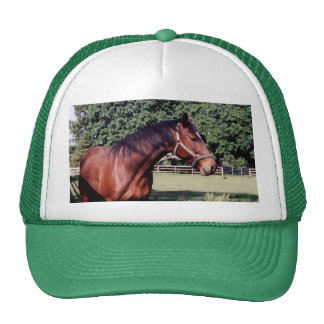 Get My Good Side Hat