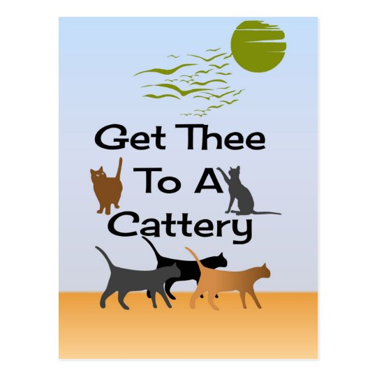 Get Thee To A Cattery Postcard