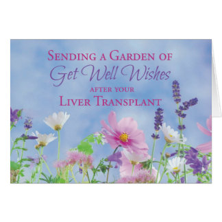 Get Well After Liver Transplant, Garden Flowers Greeting Card