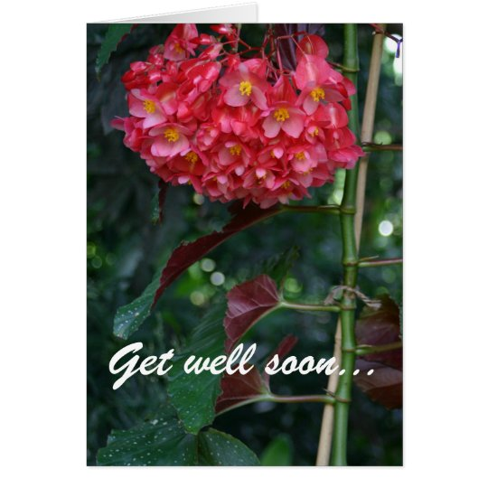 Get well soon and back to full bloom floral card