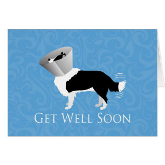 Get Well Soon - Border Collie Male Greeting Card