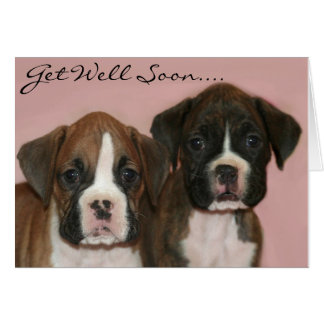 Get well soon Boxer Puppies greeting card