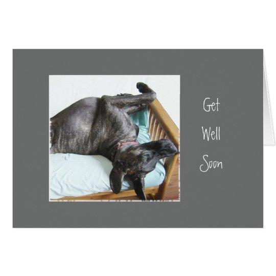 Get Well Soon Fun Great Dane Dog Sleeping