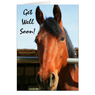 Get Well Soon horse greeting card