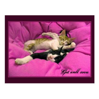 Get well soon - pink kittens postcards