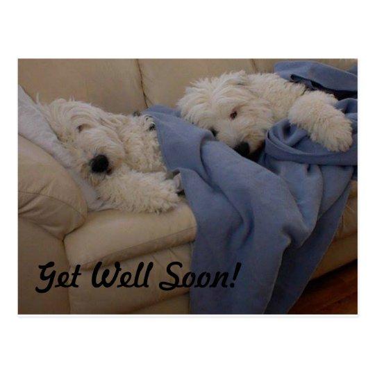 Get Well Soon! Postcard