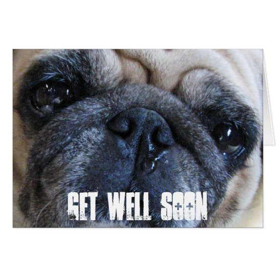 Get Well Soon Sick Pug Dog Card